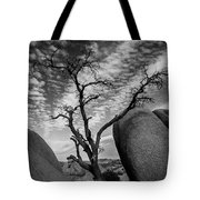 Hunger In The Desert Tote Bag