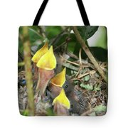 Hungry Baby Birds Tote Bag