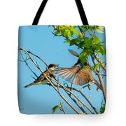 Hungry Birds In Tree Close-up Tote Bag