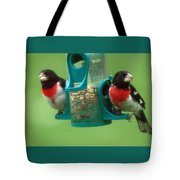 Hungry Birds Tote Bag