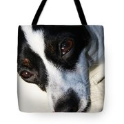 Hungry Dog Tote Bag