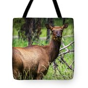 Hungry Elk Tote Bag