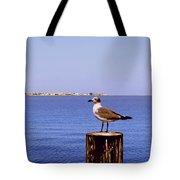 Hungry Sea Gull Tote Bag