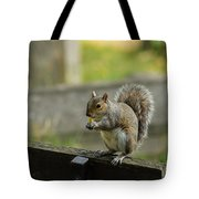 Hungry Squirrel Tote Bag