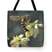Hunter Wasp Tote Bag