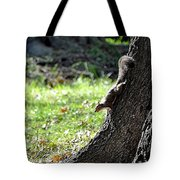 Hunting Acorns Tote Bag