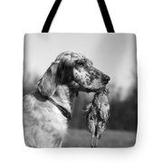 Hunting Dog With Quail, C.1920s Tote Bag