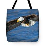 Hunting Eyes Tote Bag