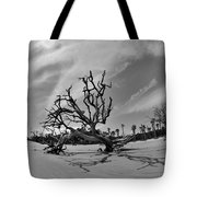 Hunting Island Beach And Driftwood Black And White Tote Bag