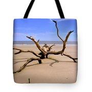 Hunting Island Beach Beaufort Sc Tote Bag