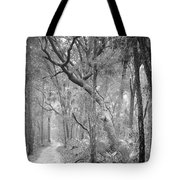 Hunting Island Path  Tote Bag
