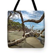 Huntington Island Panorama Tote Bag