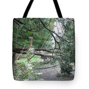 Hurricane Irene Tote Bag