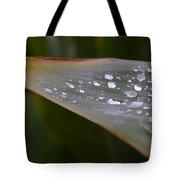 Hurricane Raindrops Tote Bag