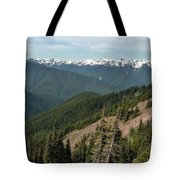 Hurricane Ridge View Tote Bag