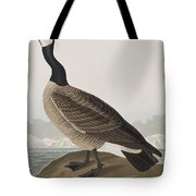 Hutchins's Barnacle Goose Tote Bag