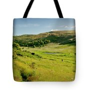 Hutton's Bog View. Holyrood Park. Tote Bag