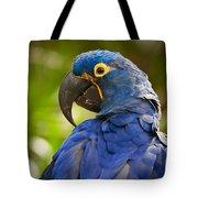 Hyacinth 458 Tote Bag