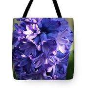 Hyacinth Highlights Tote Bag