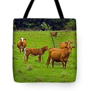 Hybrid Cattle On The Deseret Ranch In East Central Florida Tote Bag