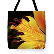 Hybrid Lily Tote Bag