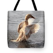 Hybrid Showoff Tote Bag