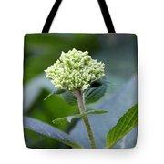 Hydrangea Bud Tote Bag