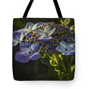 Hydrangea Color Tote Bag