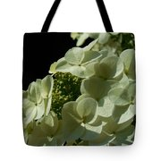 Hydrangea Formal Study Portrait Tote Bag