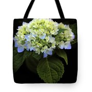 Hydrangea In Bloom Tote Bag
