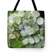 Hydrangea  In Purple And Pale Yellow Tote Bag
