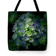Hydrangea - Flowers Tote Bag