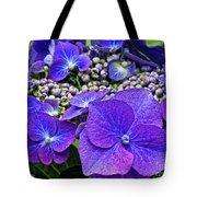 Hydrangea Plant Tote Bag