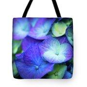 Hydrangea - Purple And Green Tote Bag