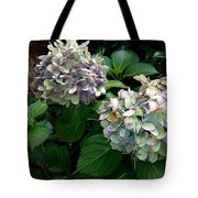 Hydrangeas In The Garden Tote Bag