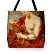 Hygeia - Goddess Of Health Tote Bag by Peter Paul Rubens