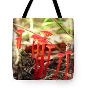 Hygrophorus Cantharellus Tote Bag