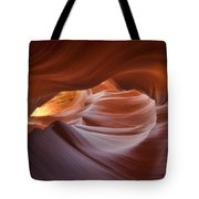 Hypnotized  Tote Bag by Peter Coskun