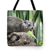 Hyrax Tote Bag