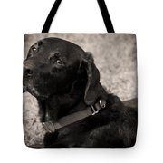 I Am Being Good Tote Bag