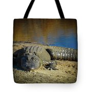 I Am Gator, No. 60 Tote Bag