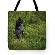 I Am So Handsome Tote Bag