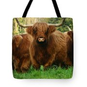I Am The Boss Here Tote Bag