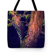 I Am Tree Tote Bag