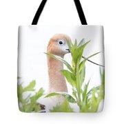 I Am Watching You Tote Bag