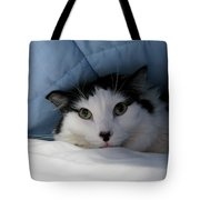 I Am Working Too Hard Tote Bag