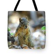I Ate Too Many Nuts Tote Bag