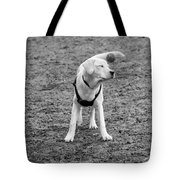I Don't Know How To Fetch Yet Tote Bag
