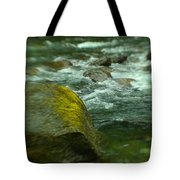 I Dreamed Of The River Tote Bag