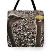 I Feel Pretty Tote Bag